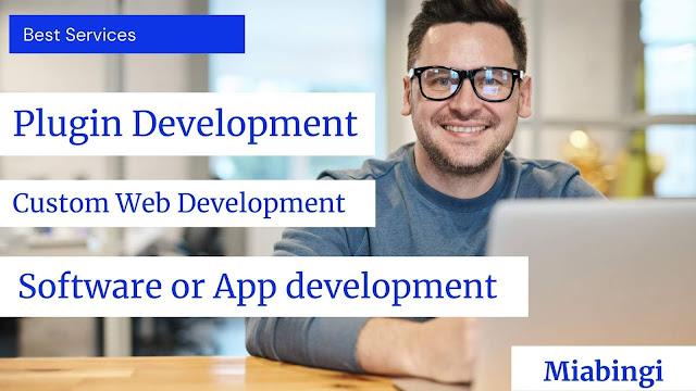 Wordpress plugin development services or custom web development