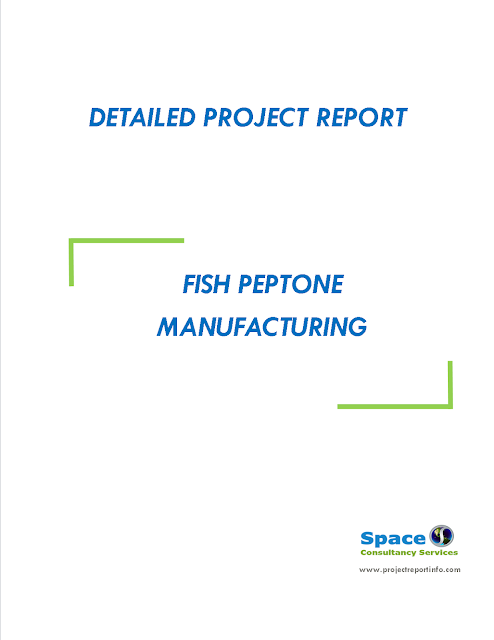 Project Report on Fish Peptone Manufacturing
