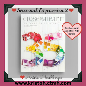 Get a FREE copy of the NEW Seasonal Expressions 2 Idea book  with 1st order placed online!