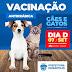 Prefeitura de Eunápolis inicia Campanha de Vacinação de cães e gatos nesta segunda (24/08)