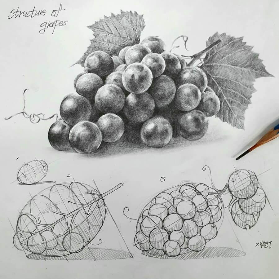 11-Grapes-Anjjaemi-www-designstack-co
