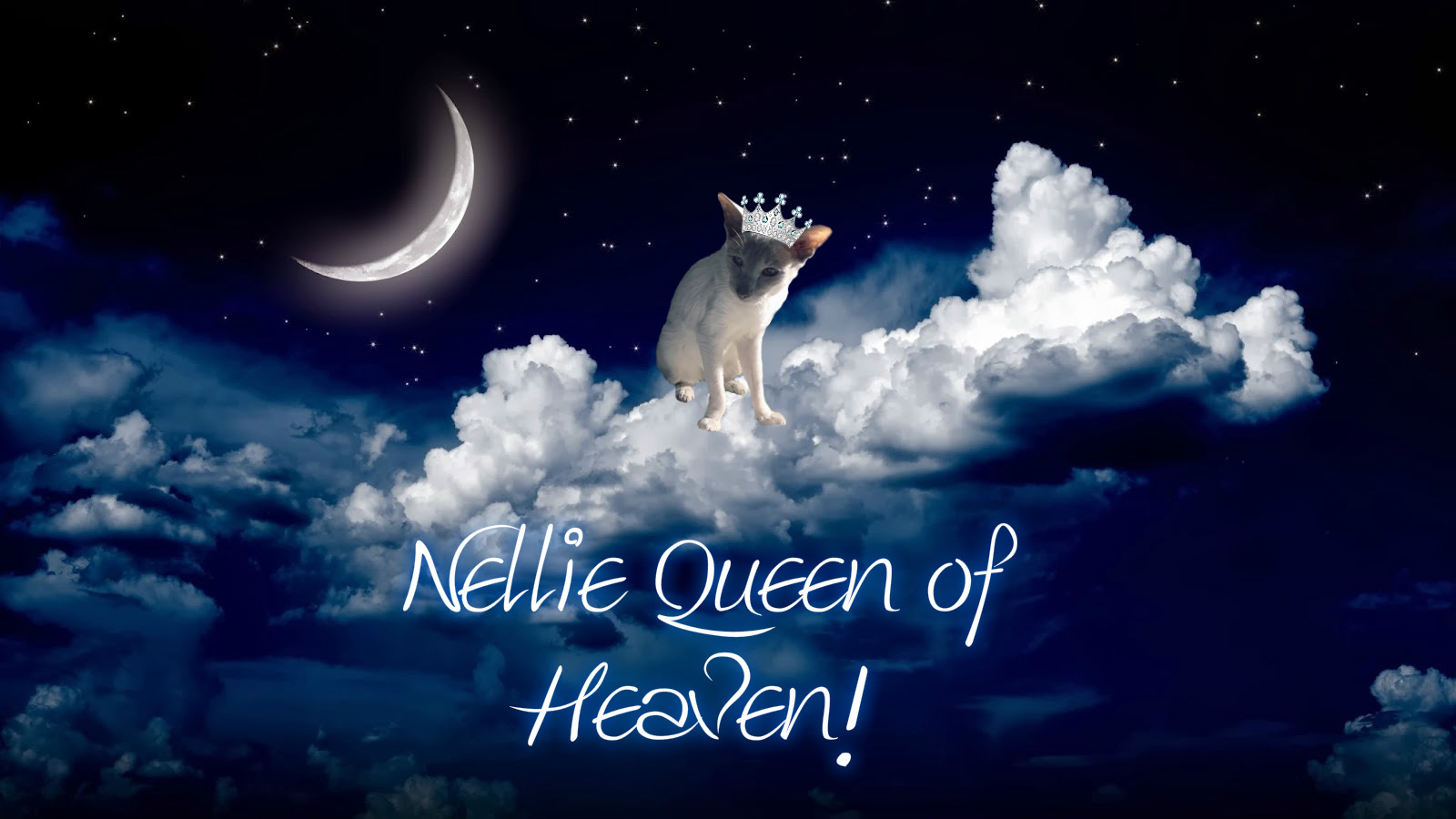 Nellie Queen of Heaven