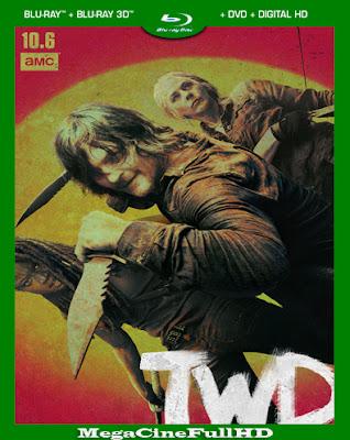 The Walking Dead Temporada 10 HD 1080P Latino