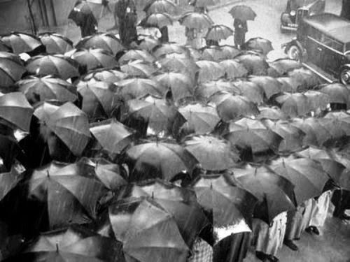 black and white photo of numerous open umbrellas in the rain