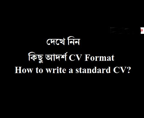 Curriculum Vitaecv Basic Resume Writing Ruleselements