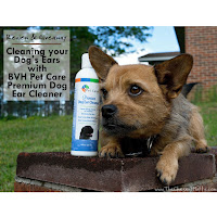 Review & Giveaway: Cleaning your Dog's Ears with BVH Pet Care Premium Dog Ear Cleaner