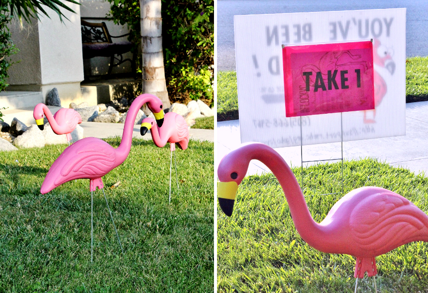 #RaiseLove and have fun with a unique 'You've Been Flocked' fundraiser in your community! #Sponsored