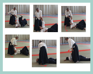 inmovilizacion aikido