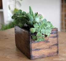 Reclaimed Wooden Planter Succulents - Diy Akamatra