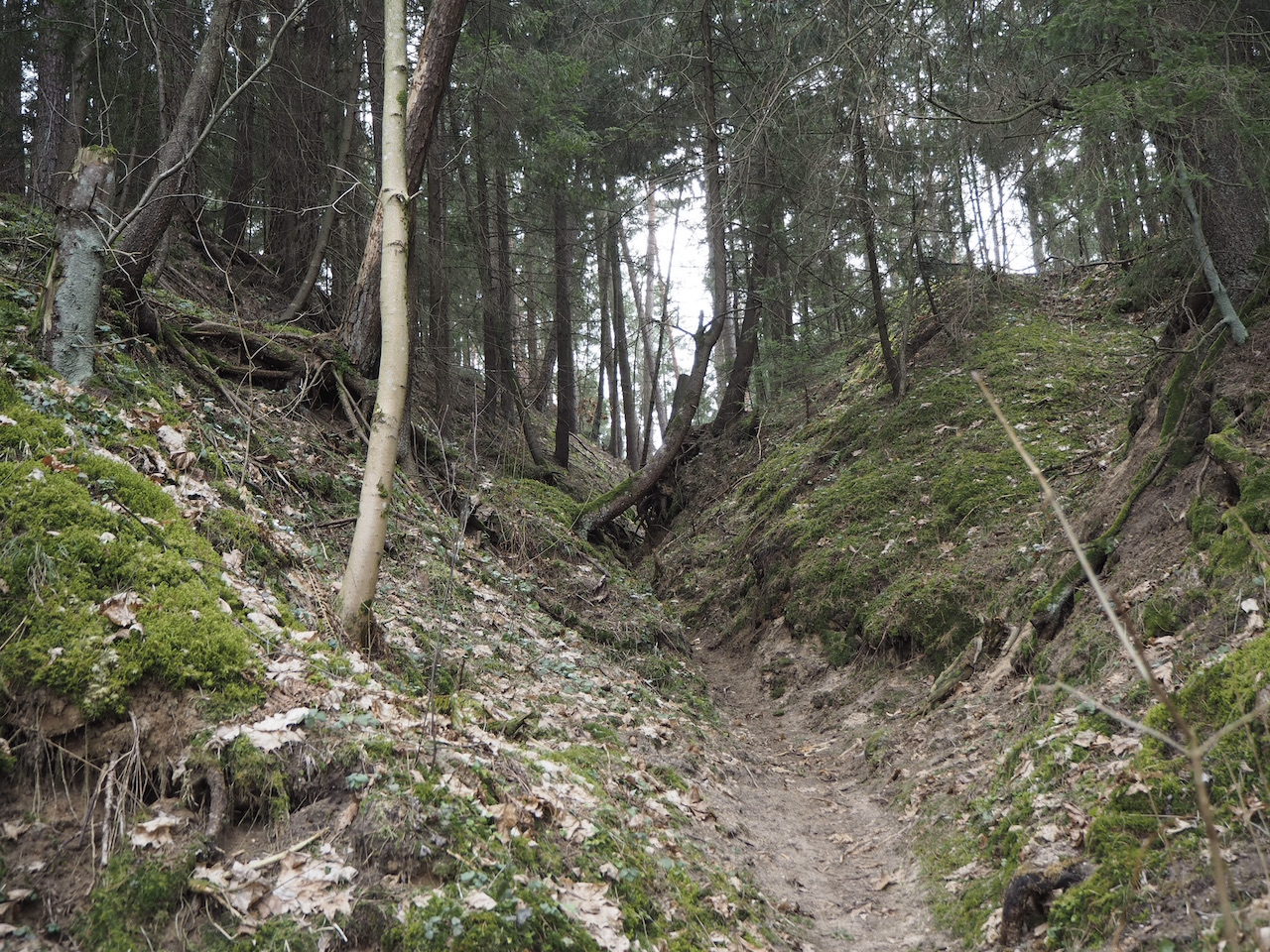 Senųjų kaimų takas
