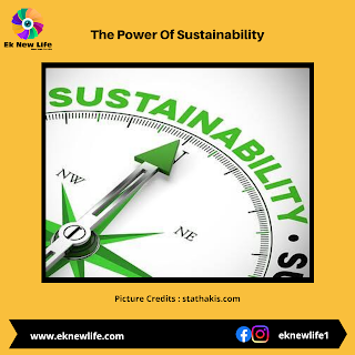 The Power Of Sustainability