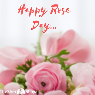 Happy Rose Day Shayari 2019 Sms Status in Hindi