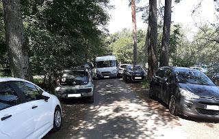 Saturation du stationnement en forêt de fontainebleau