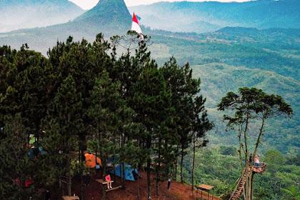 Jajar Gunung Kinayungan Sukamakmur, Spot Camping Terbaru di Bogor View Bagus