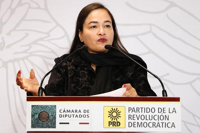 Exige PRD investigar y no dejar en la impunidad a Irma Eréndira Sandoval