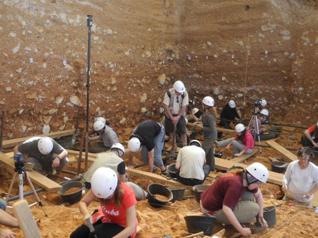 New evidence on the diet of the 'Homo antecessor' from Atapuerca