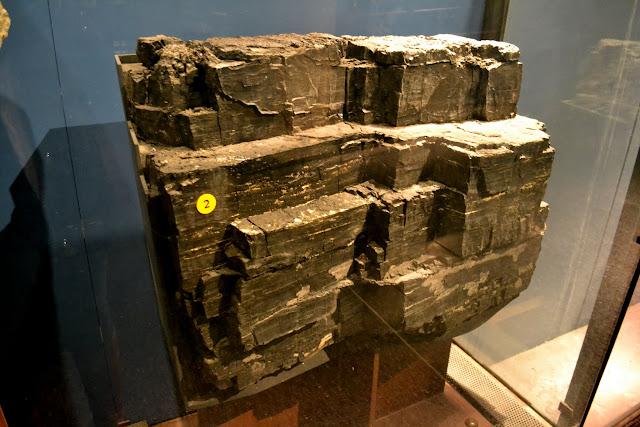 Американський музей природознавства, Нью-Йорк(American Museum of Natural History, NYC). Вугілля