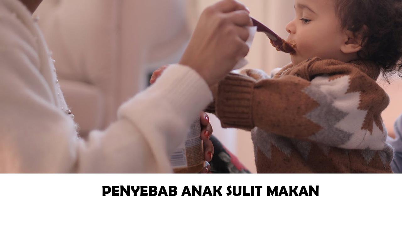 Cara Mengatasi Anak Yang Sulit Makan Pada Masa Pemberian MP-ASI