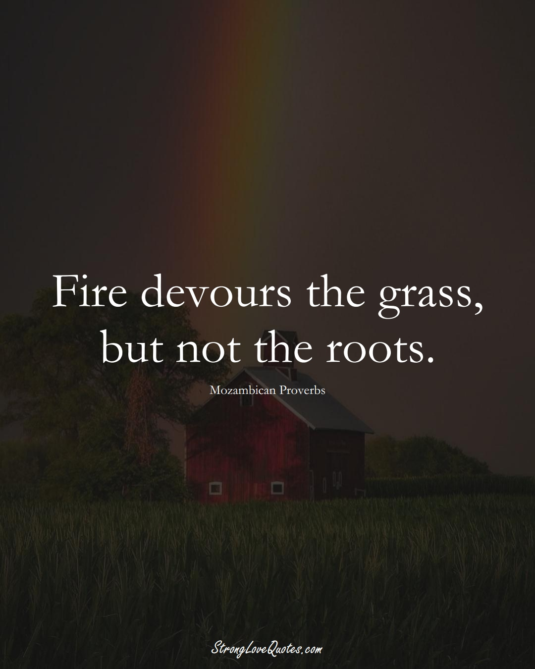 Fire devours the grass, but not the roots. (Mozambican Sayings);  #AfricanSayings