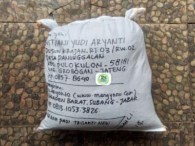 Benih padi yang dibeli   AGUSTIANI Grobogan, Jateng.  (Setelah packing karung).