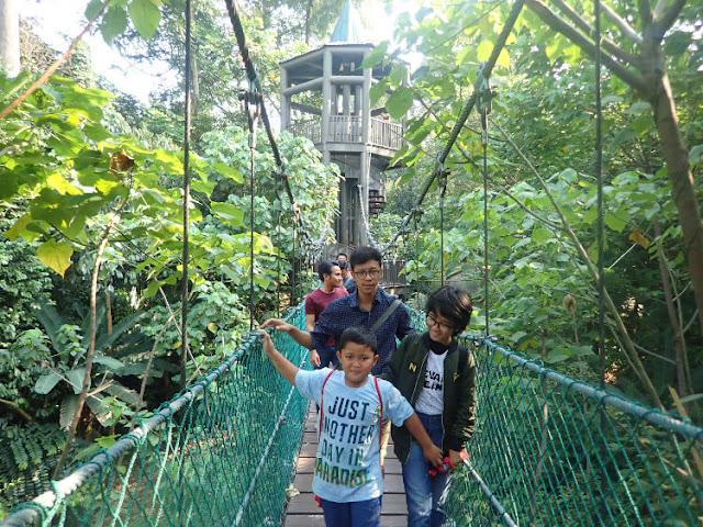 jalan-jalan ke hutan kota di malaysia