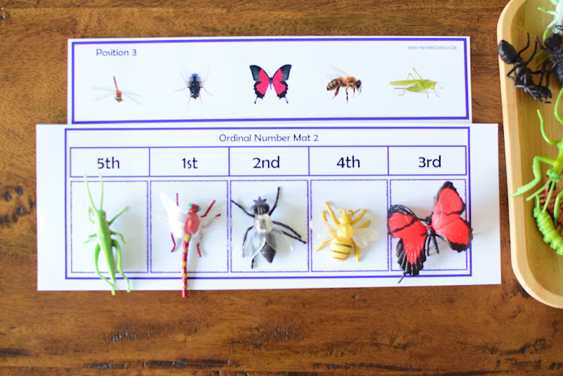 INSECT THEMED PRACTICE WITH ORDINAL NUMBERS
