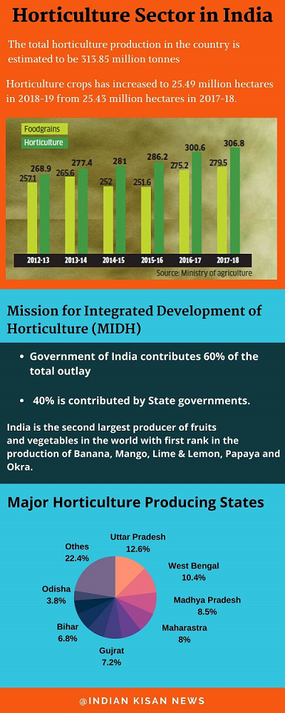 Infographic on Horticulture Sector on India