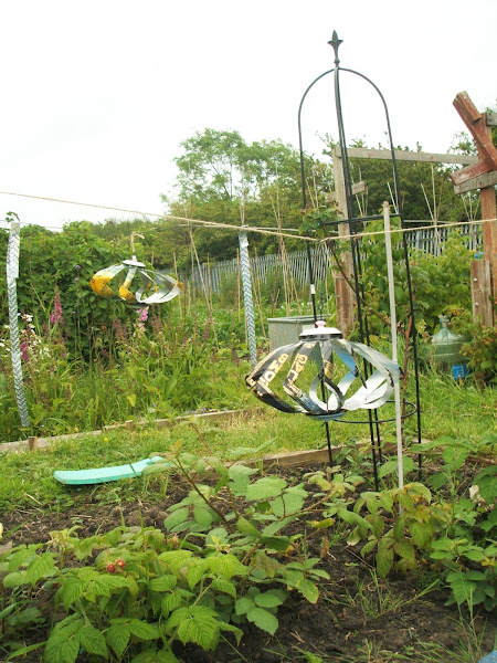 windspinners made with recycled cans on our allotment