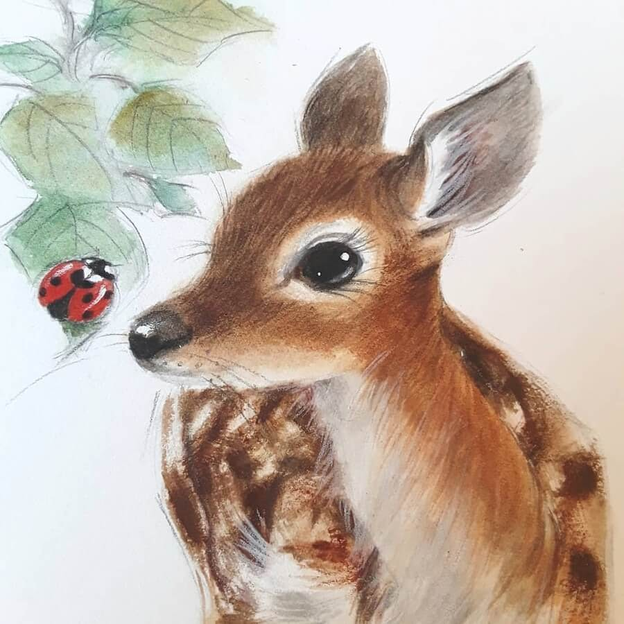09-Fawn-and-ladybird-Anna-Llorens-www-designstack-co