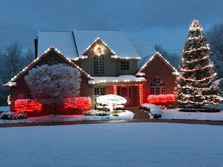 Christmas light installation Ann Arbor