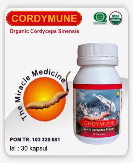 Hasil gambar untuk cordymune nasa