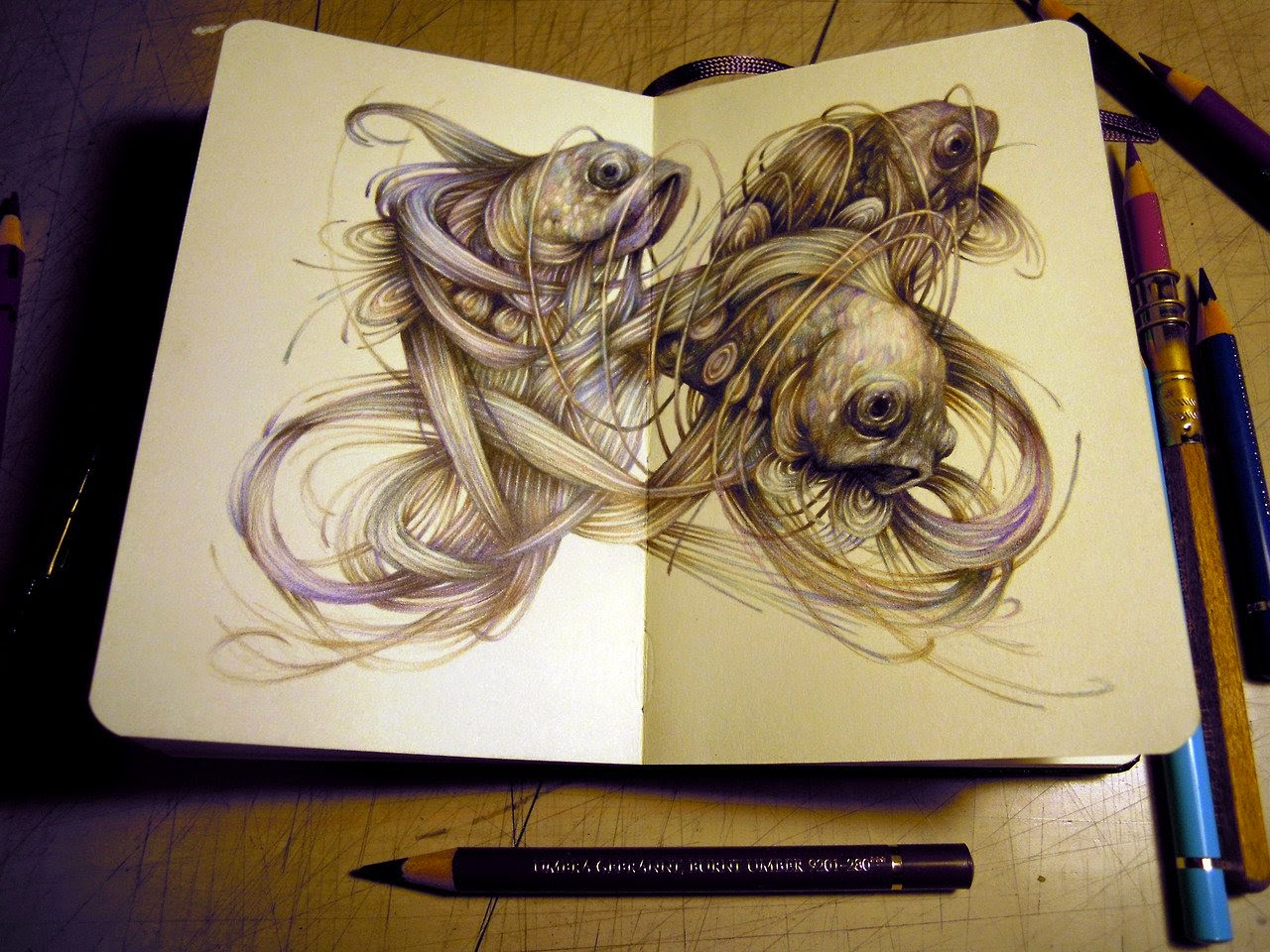 21-Marco-Mazzoni-Surreal-Animal-Drawings-www-designstack-co
