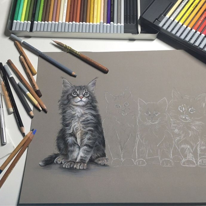 12-Little-Cat-Family-Wip-Tatjana-Bril-Domestic-and-Wild-Animal-Drawings-www-designstack-co