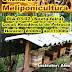 Oficina de Meliponicultura será realizada em Mairi