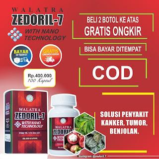 OBAT KANKER HATI - Zedoril 7 Obat Herbal Tradisional Penghancur Kanker