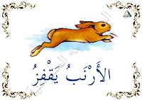 الأرنب يقفز