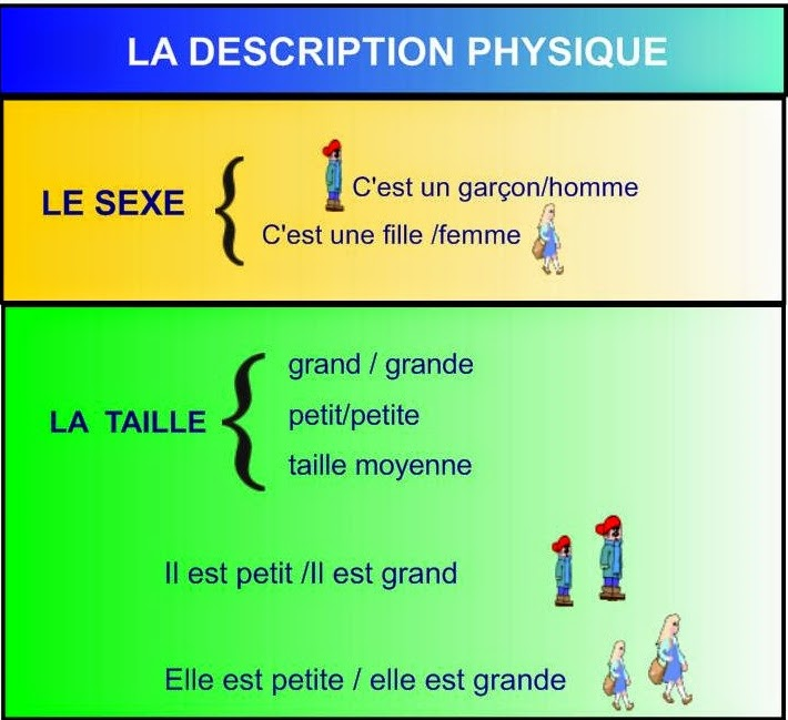 description physique en anglais physical appearance My teacher