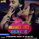 Bhabhi Ji Hajir Hai webseries  & More