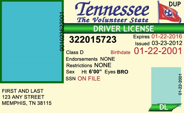Scrappng: Tennessee Driver's License Editable PSD Template Download ...