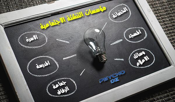 مؤسسات التنشئة الاجتماعية