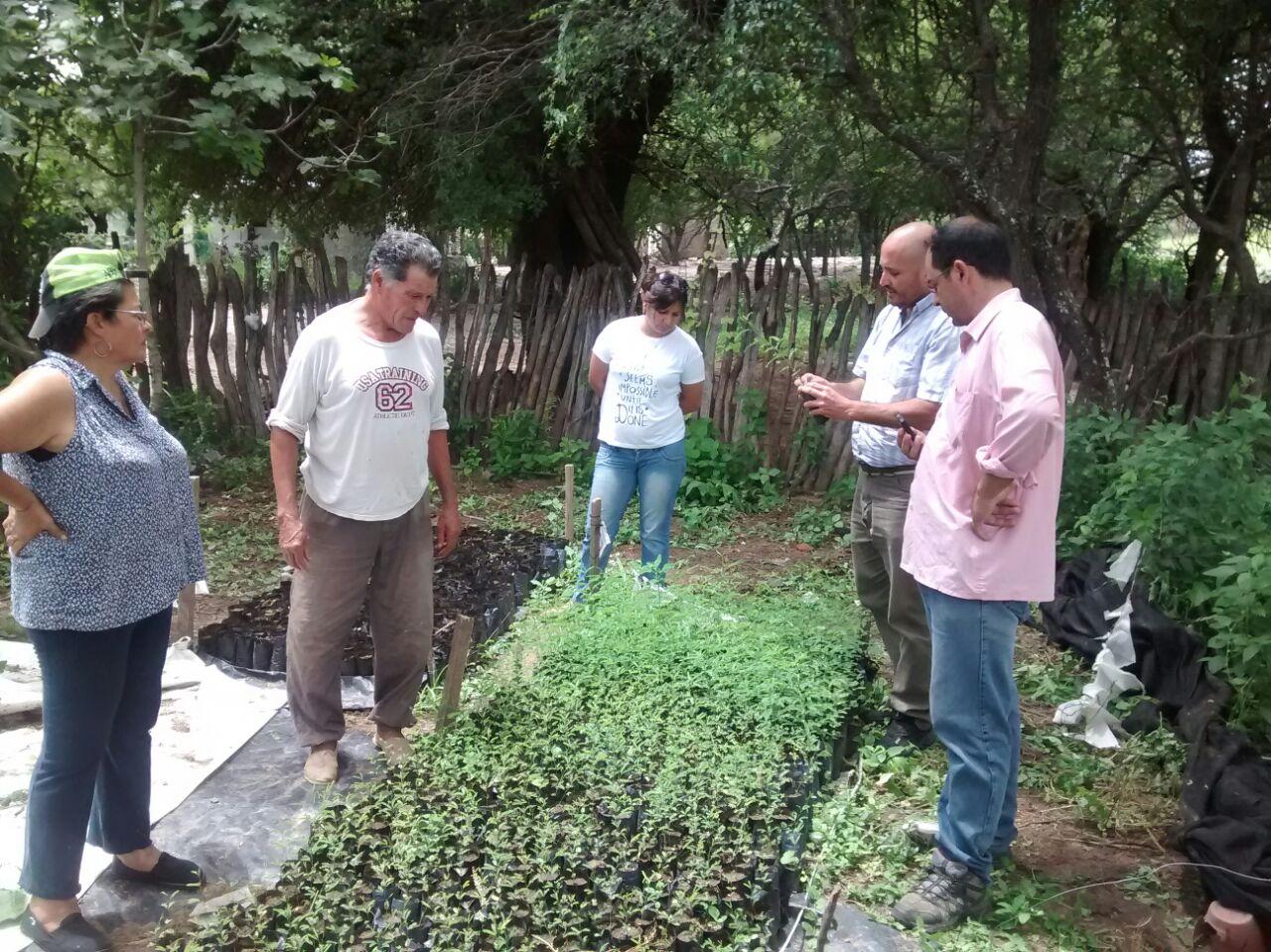 Parque chaque o forestal capacitaci n y monitoreo en for Viveros en santiago