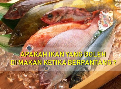 Resepi Ikan Tenggiri Dalam Pantang ~ Resep Masakan Khas