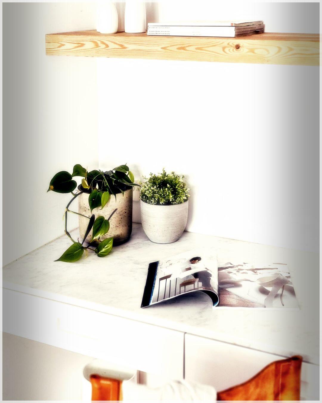 GardenPots-99789675960