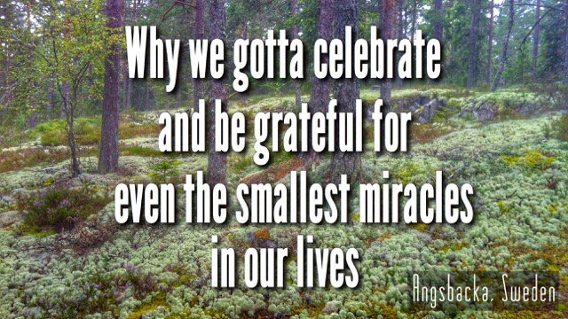 Why To Be Grateful For Miracles