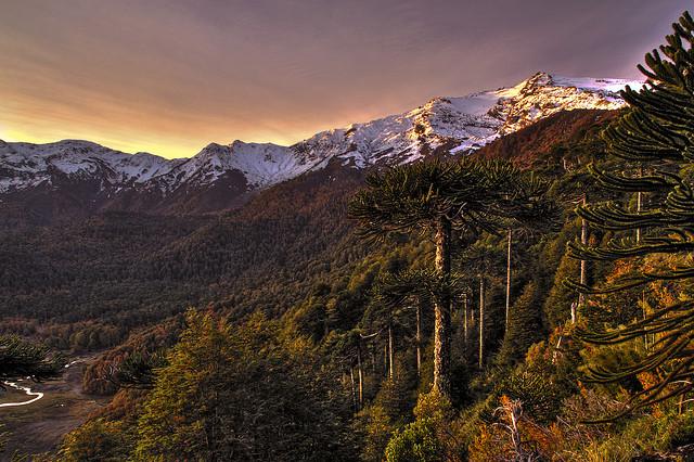 www.viajesyturismo.com.co640x426