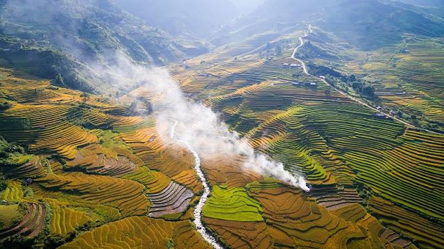 Vietnam is wonderful in ripen rice season 5