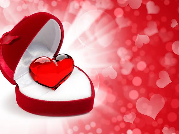Valentinovo srce download besplatne pozadine za desktop 1152x864 slike ecard čestitke