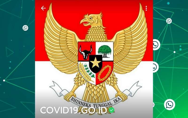 Nomor WhatsApp Pusat Informasi COVID-19 Kemkominfo RI