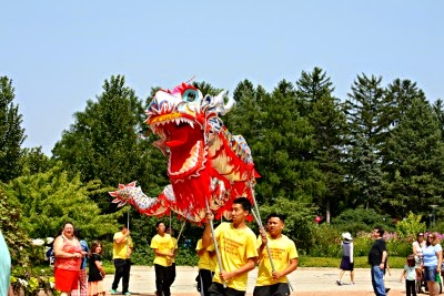 Chinese dragon in parade at Destination Asia at Morton Arboretum