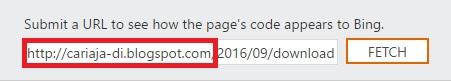Cara Mengatasi Tidak Bisa Submit Artikel di Bing WebMaster Tools
